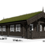 Scandinavian type log homes